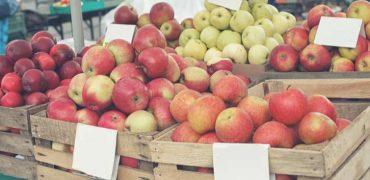 Catholic Apple Farmer Sues Over Market Ban